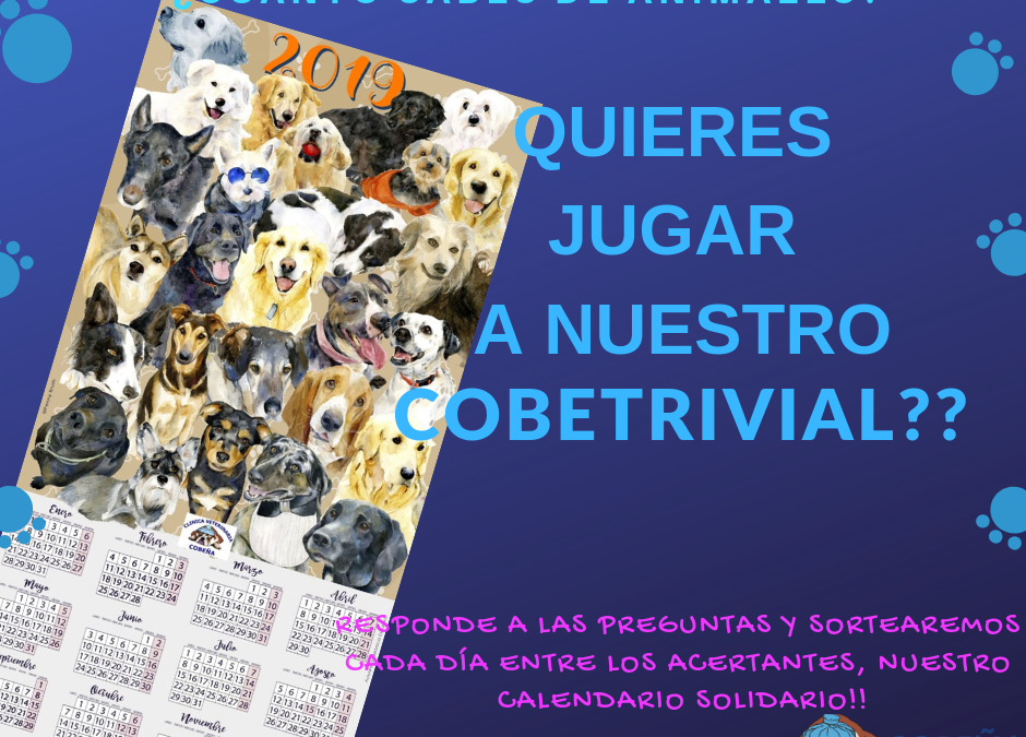 Concurso #CobeTrivial