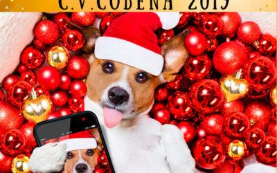 Concurso Navidad 2019